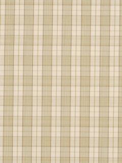 Robert Allen Fabric - Amsale - Green Tea