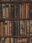 Andrew Martin Wallpaper Library A & B - Multi Books