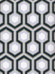 Cole & Son Wallpaper HICKS HEXAGON SAGE/GR 66_8055_CS